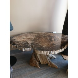 Table Bois fossile